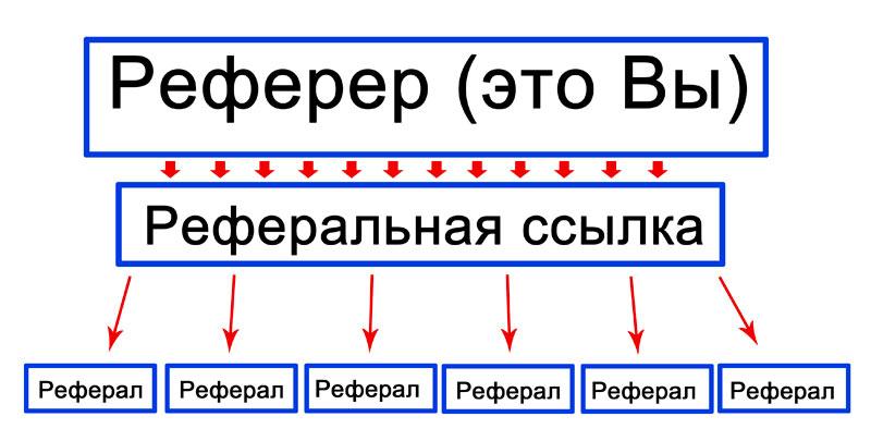 gyors hálózati bevételek)