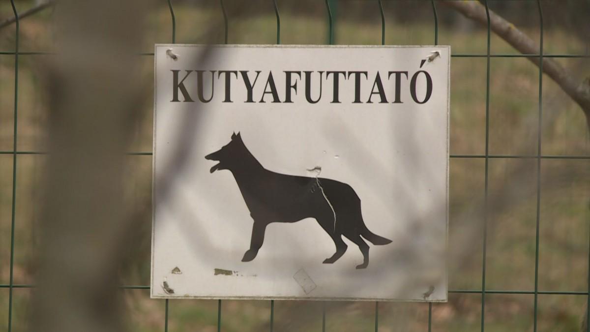 Magyar postatörténet